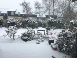 jeg nyder den sidste sne